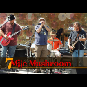 Seven Mile Mushroom - Live Music @ Jiggy Ray's PIzzeria | Elizabethton | Tennessee | United States